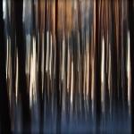 abstrakcje_21
