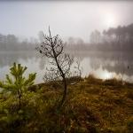 fotografia_przyrodnicza_17