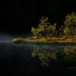fotografia_przyrody_27