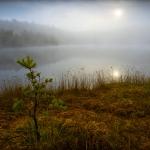 fotografia_przyrody_31