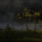 fotografia_przyrody_36