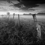 fotografia czarno biała_10