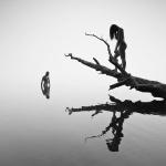 fotografia_konceptualna_147